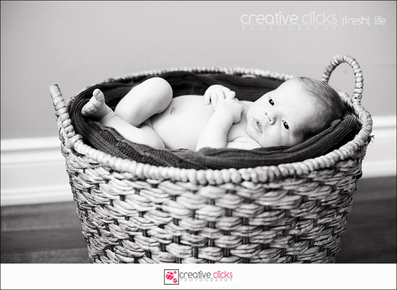 Newborn baby boy lying in a basket