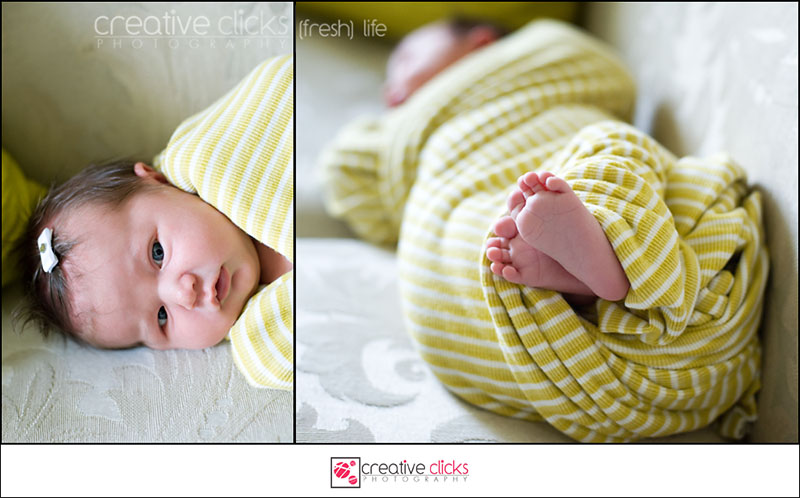 Newborn Photography by Creative Clicks