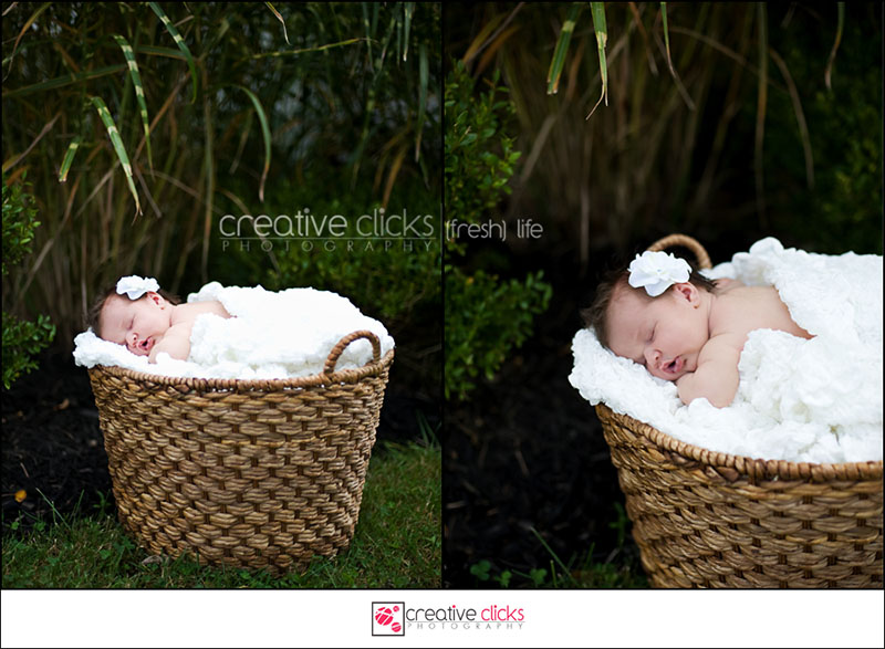 Niagara Newborn On-location Photography